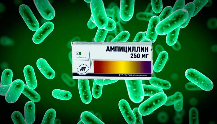 Антибактериальное действие Ампициллина