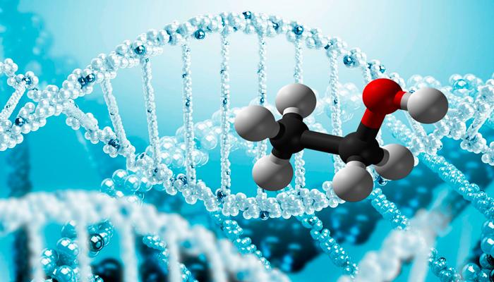 Алкоголизм передающийся через гены