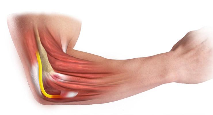 Причины развития воспалительных процессов