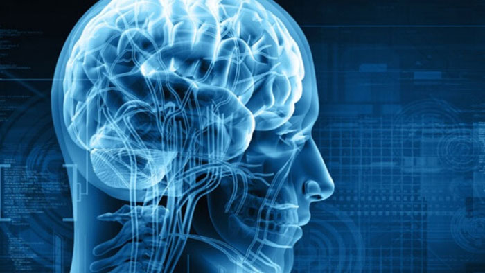 Тетрагидроканнабинол пагубно влияет на клетки головного мозга