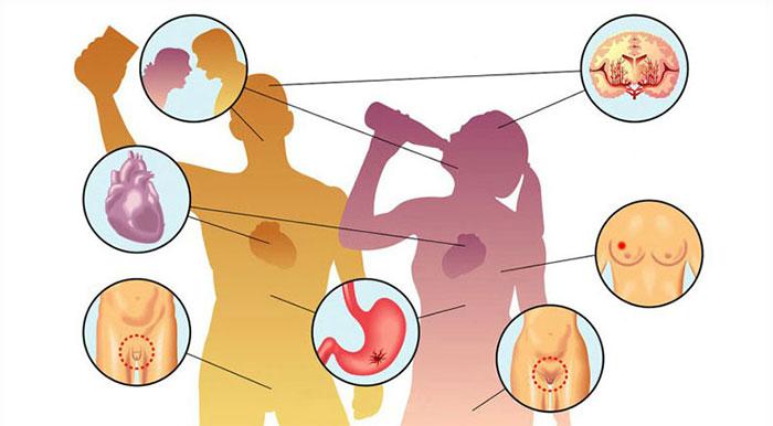 Пагубное воздействие спиртного на органы и системы человека