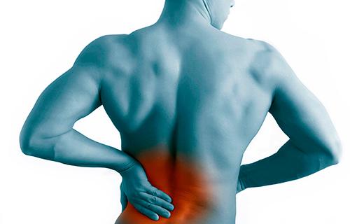 Почему болят мышцы спины