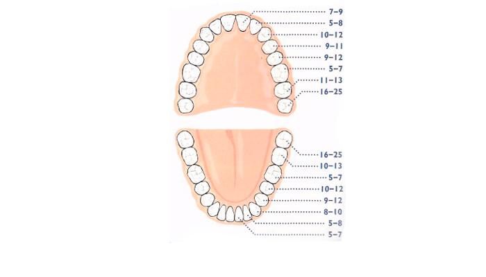 Появление привычки грызть ногти у детей из-за смены зубов