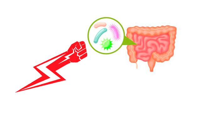 Урон микрофлоре человека при смешивании Вильпрафена со спиртным