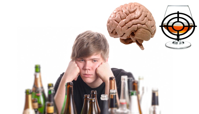 Выбор мозгом приоритетной целью по отношению к алкоголю на первом защитном барьере