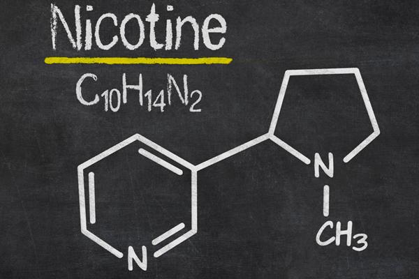Химическая формула Никотина