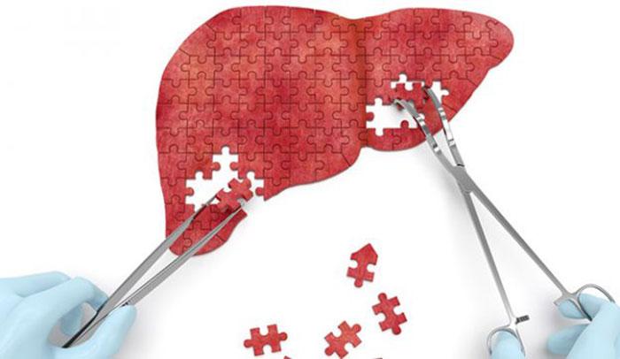 Гептор применяют для восстановления клеток печени при различных патологиях этого органа