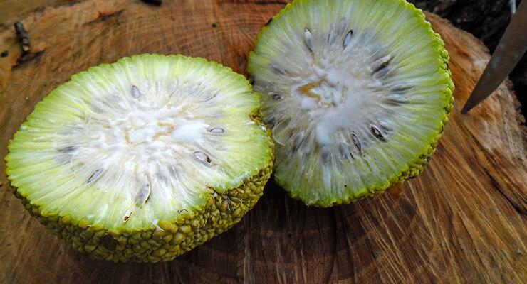 Противопоказания к лечению фруктом