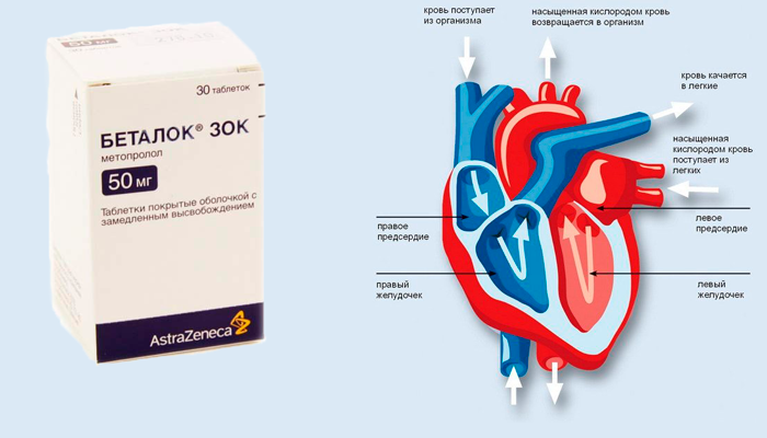 Стабилизация работы сердца препаратом Беталок Зок