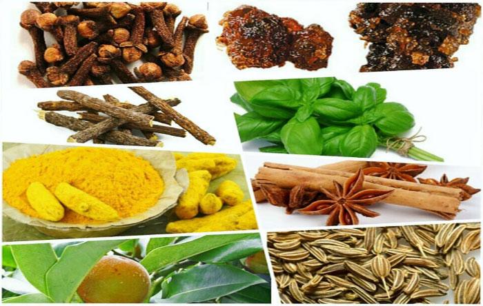 Травяные сигареты Nirdosh состоят из пряностей и различных трав