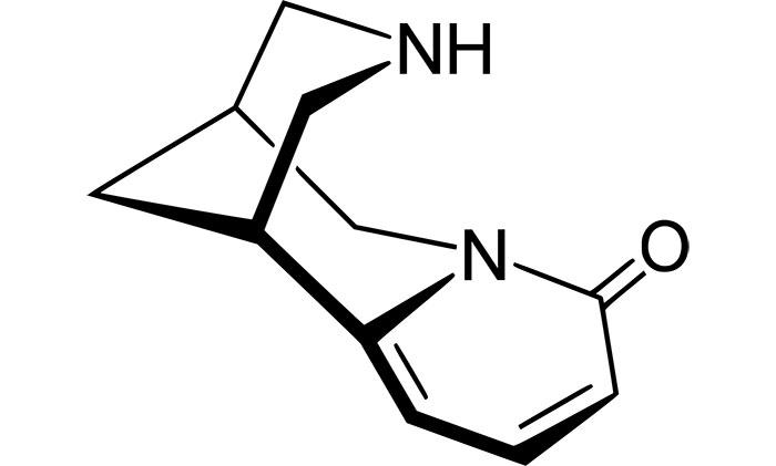 Цитизин, действующее вещество Десмоксан, постепенно замещает действие никотина на рецепторы