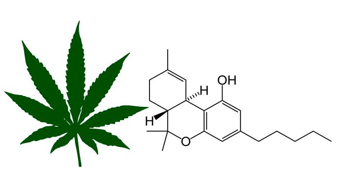 Химическая формула тетрагидроканнабинола