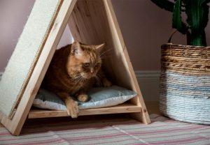 Создаем комфортный домик и когтеточку для кота-великана