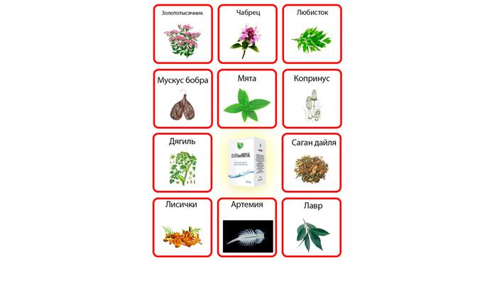 Вещества, входящие в состав лекарства Easynodrink